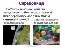 Середовище Космос – середовище для Сонця і Місяця Водойма чи акваріум – серед...
