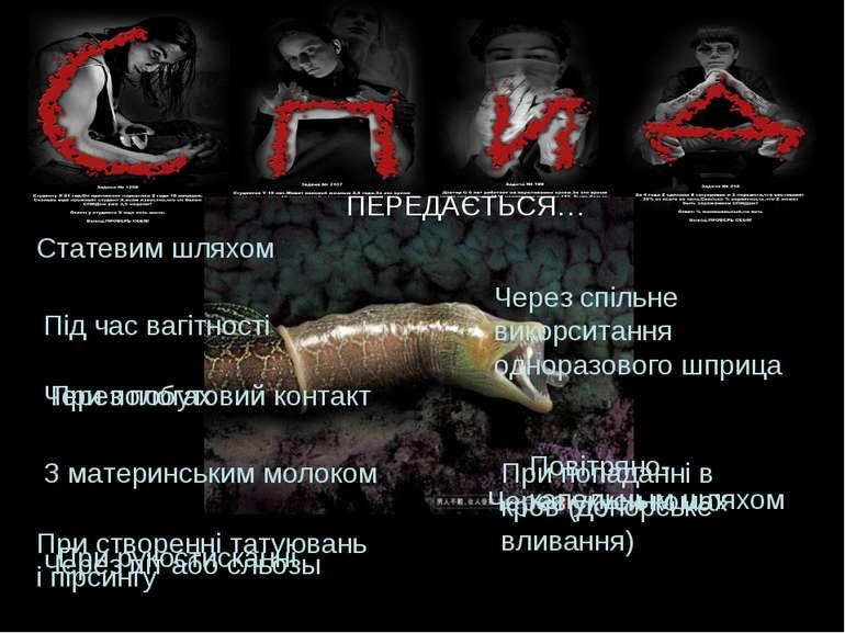 ПЕРЕДАЄТЬСЯ… Статевим шляхом Через укуси комах При пологах З материнським мол...