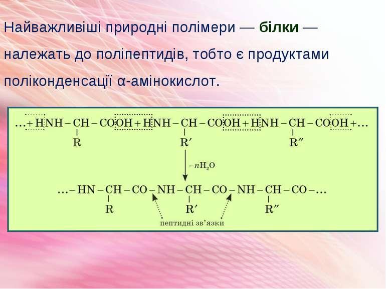 Найважливіші природні полімери — білки — належать до поліпептидів, тобто є пр...