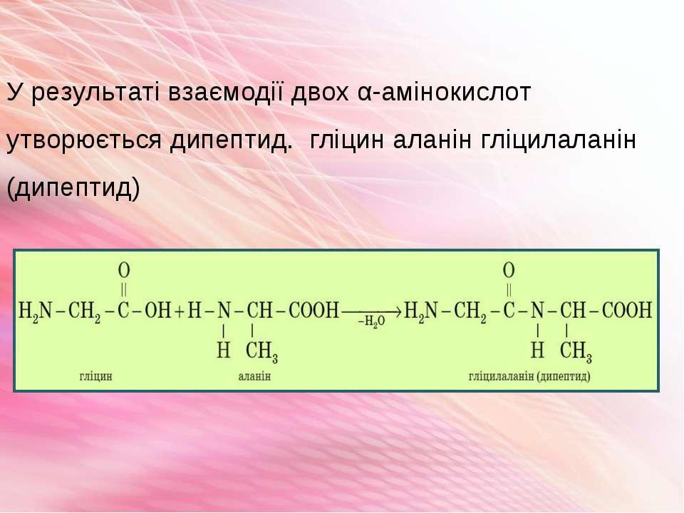 У результаті взаємодії двох α-амінокислот утворюється дипептид. гліцин аланін...