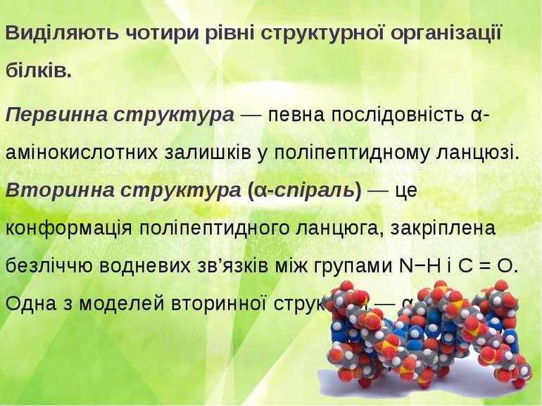 Виділяють чотири рівні структурної організації білків. Первинна структура — п...