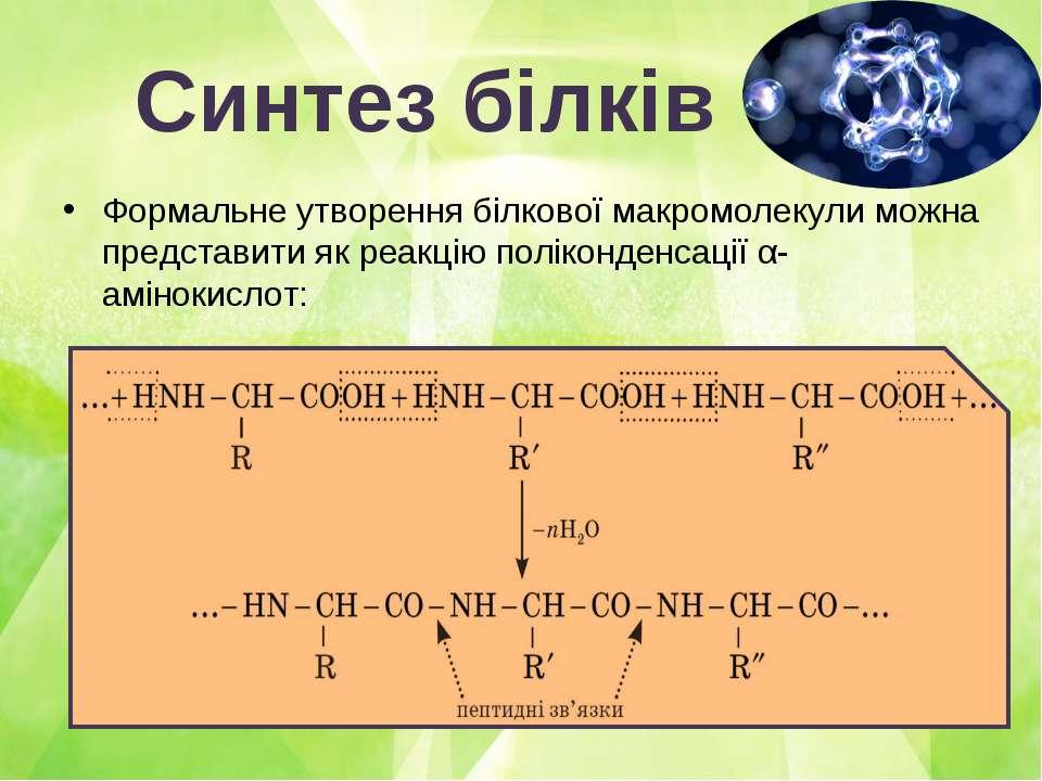 Синтез білків Формальне утворення білкової макромолекули можна представити як...