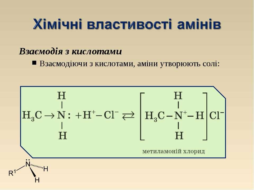 Взаємодія з кислотами Взаємодіючи з кислотами, аміни утворюють солі: