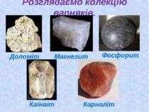 Розглядаємо колекцію вапняків. Доломіт Магнезит Фосфорит Каїнаіт Карналіт