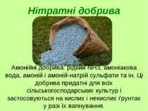 Амонійні добрива: рідкий NH3, амоніакова вода, амоній і амоній-натрій сульфат...
