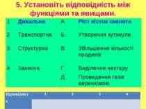 5. Установіть відповідність між функціями та явищами. 1 Дихальна А Ріст кісто...