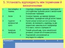 5. Установіть відповідність між термінами й визначеннями 1 Вентиляційна ткани...