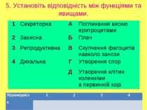 5. Установіть відповідність між функціями та явищами. 1 Секреторна А Поглинан...