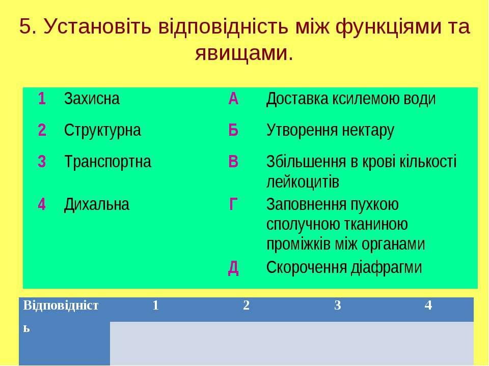 5. Установіть відповідність між функціями та явищами. 1 Захисна А Доставка кс...