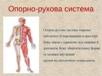 Опорно-рухова система Опорно-рухова система тварини забезпечує її переміщення...