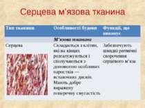 Серцева м'язова тканина Тип тканини Особливості будови Функції, що виконує М'...
