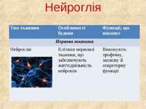Нейроглія Тип тканини Особливості будови Функції, що виконує Нервова тканина ...