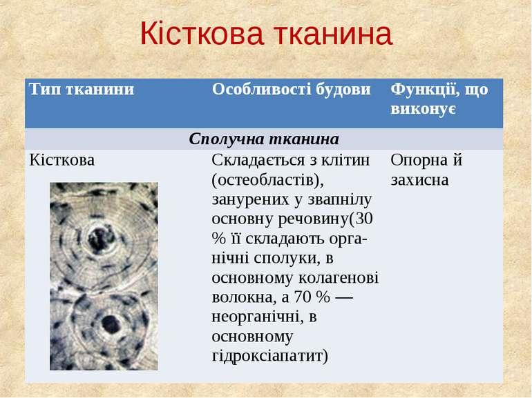 Кісткова тканина Тип тканини Особливості будови Функції, що виконує Сполучна ...