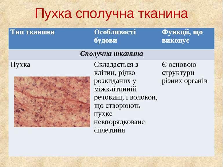 Пухка сполучна тканина Тип тканини Особливості будови Функції, що виконує Спо...