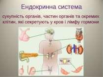Ендокринна система сукупність органів, частин органів та окремих клітин, які ...