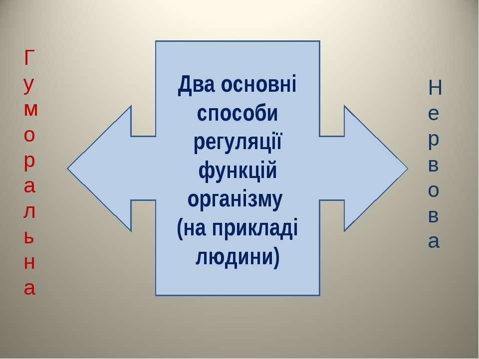 Два основні способи регуляції функцій організму (на прикладі людини) Гумораль...