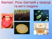 Бактерії. Роль бактерій у природі та житті людини