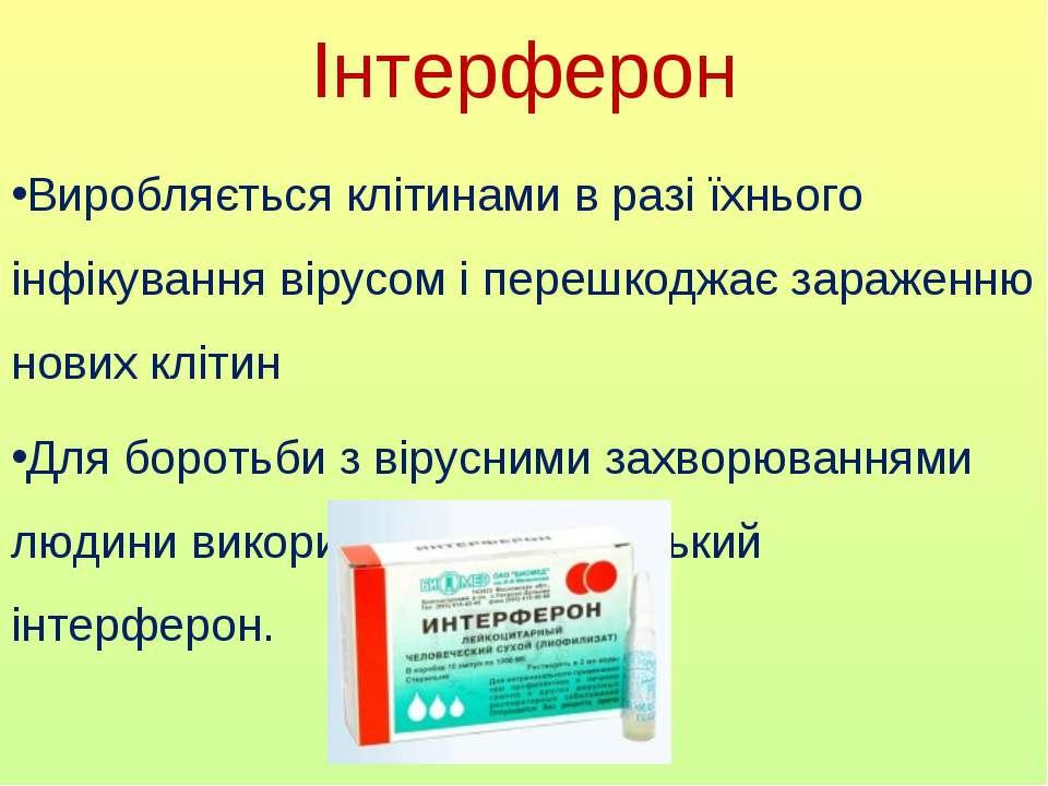 Інтерферон Виробляється клітинами в разі їхнього інфікування вірусом і перешк...