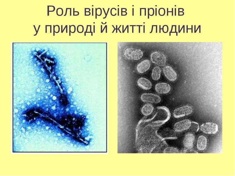 Роль вірусів і пріонів у природі й житті людини