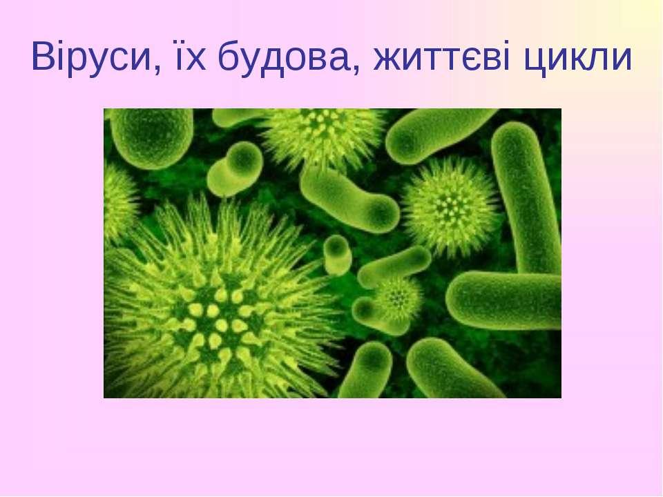 Віруси, їх будова, життєві цикли