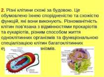 2. Різні клітини схожі за будовою. Це обумовлено їхнею спорідненістю та схожі...