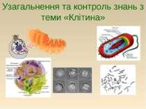 Узагальнення та контроль знань з теми «Клітина»