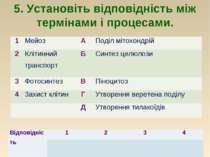 5. Установіть відповідність між термінами і процесами. 1 Мейоз А Поділ мітохо...