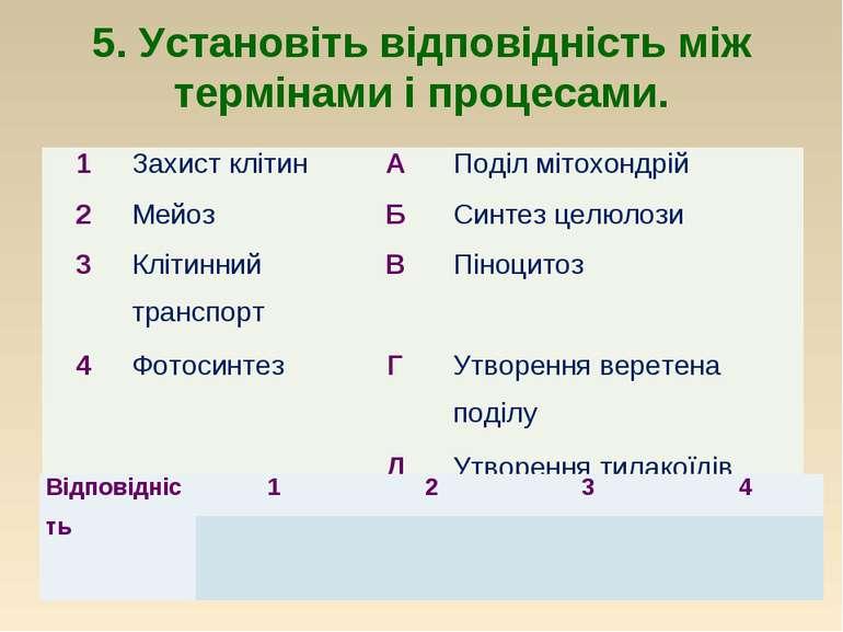 5. Установіть відповідність між термінами і процесами. 1 Захист клітин А Поді...