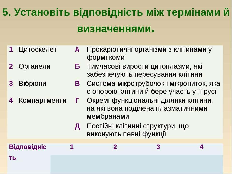 5. Установіть відповідність між термінами й визначеннями. 1 Цитоскелет А Прок...