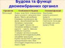 Будова та функції двомембранних органел Органели Особливості будови Основні ф...