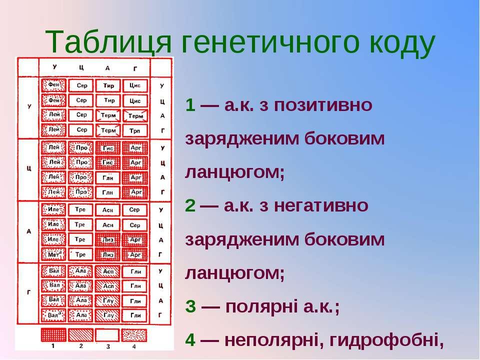 Таблиця генетичного коду 1 — а.к. з позитивно зарядженим боковим ланцюгом; 2 ...