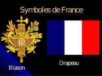 Symboles de France Blason Drapeau