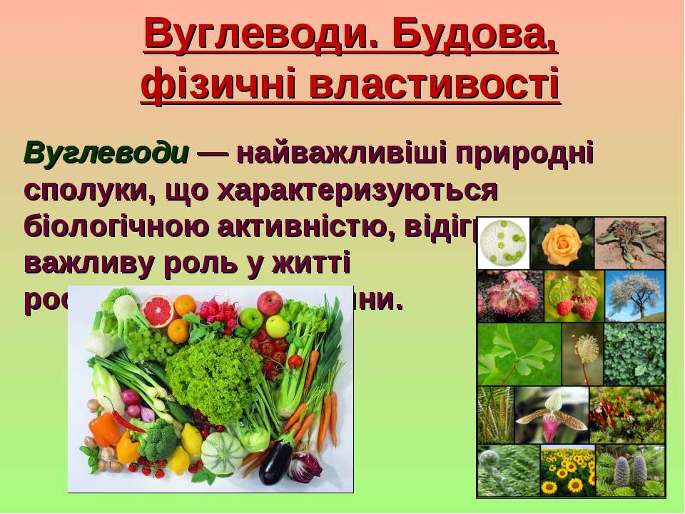Вуглеводи. Будова, фізичні властивості Вуглеводи — найважливіші природні спол...