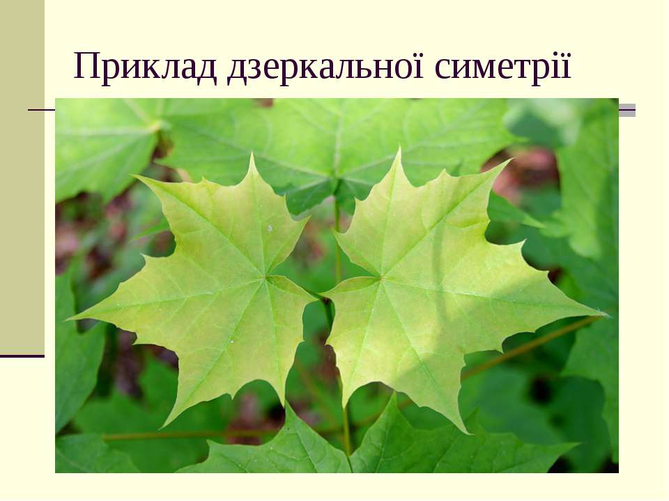 Приклад дзеркальної симетрії