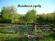 Поливання городу На городі тридцять грядок, кожна довжиною 16м і шириною 2,5 ...
