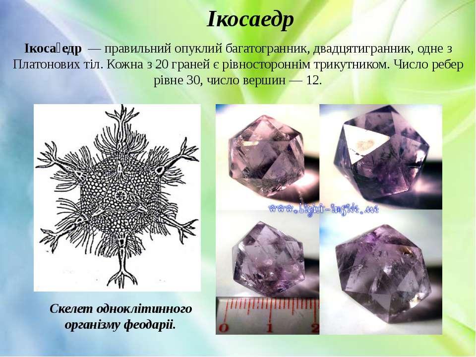 Ікосаедр Скелет одноклітинного організму феодаріі. Ікоса едр—правильний оп...