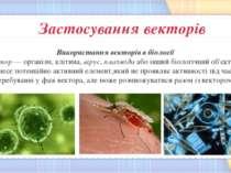 Використання векторів в біології Вектор — організм, клітина, вірус, плазміда ...