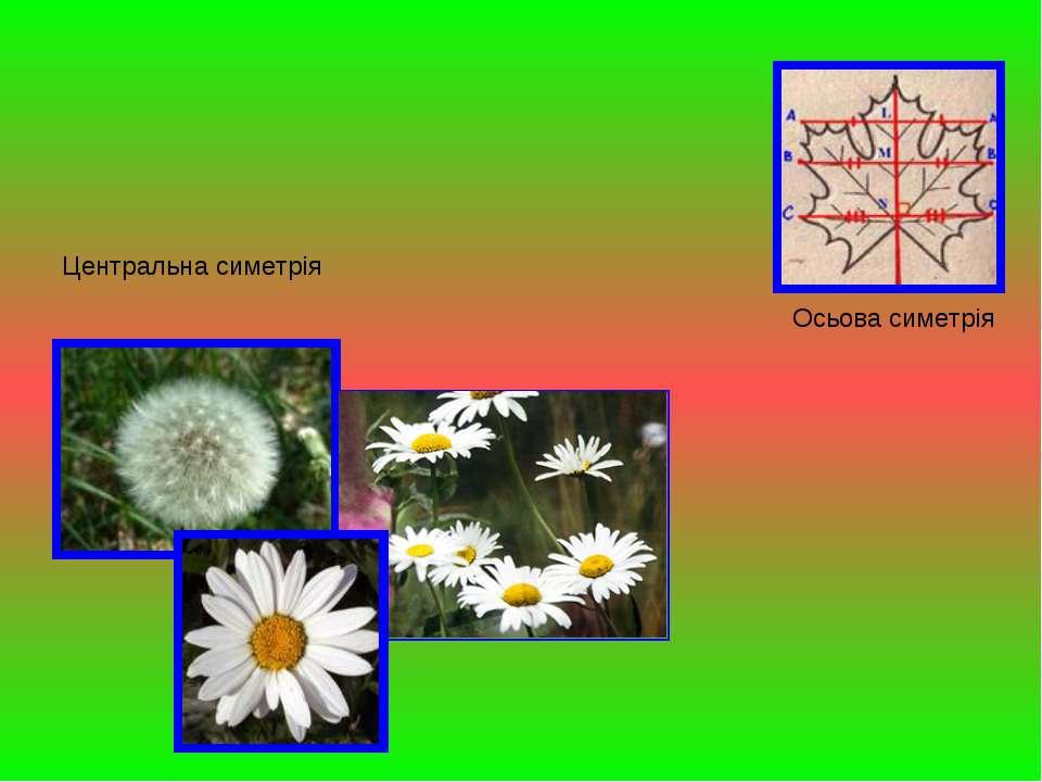 Осьова симетрія Центральна симетрія