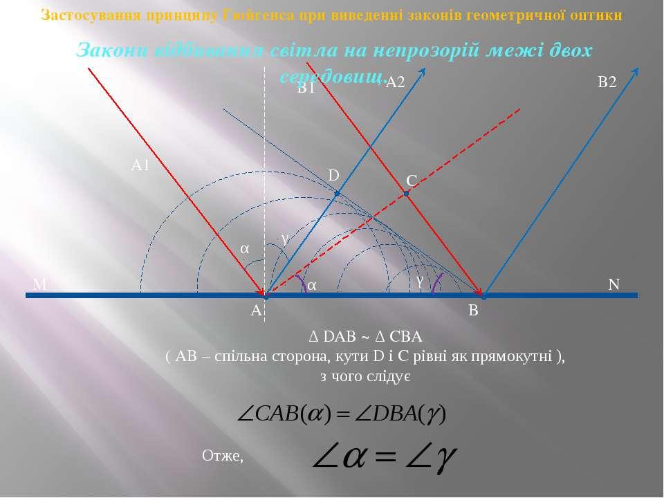 A1 A B1 B C D M N A2 B2 α γ α γ Отже, Δ DAB ~ Δ CBA ( AB – спільна сторона, к...