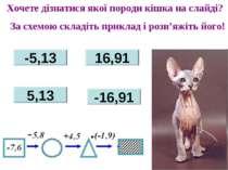 -5,13 16,91 5,13 -16,91 Хочете дізнатися якої породи кішка на слайді? За схем...