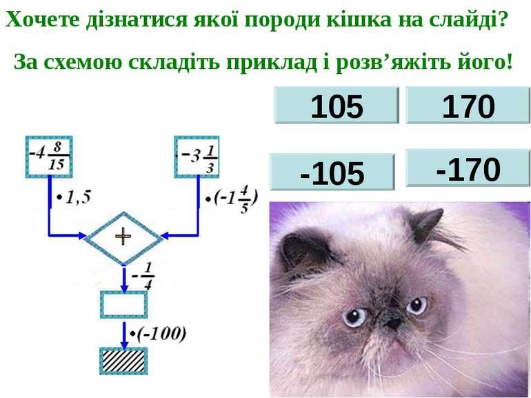 105 170 -105 -170 Хочете дізнатися якої породи кішка на слайді? За схемою скл...