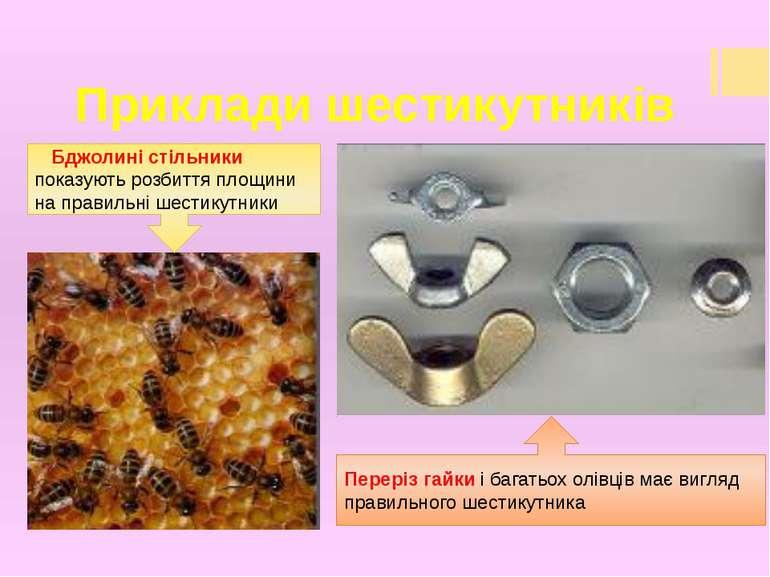 Приклади шестикутників Бджолині стільники показують розбиття площини на прави...