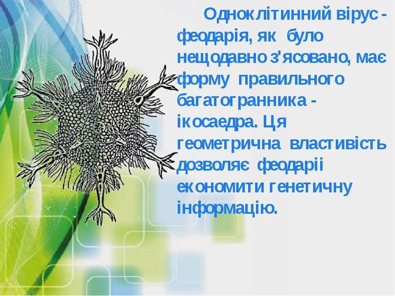 Одноклітинний вірус - феодарія, як було нещодавно з'ясовано, має форму правил...
