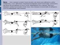 Кроль — стиль плавання на животі (животом вниз), при якому руки здійснюють гр...