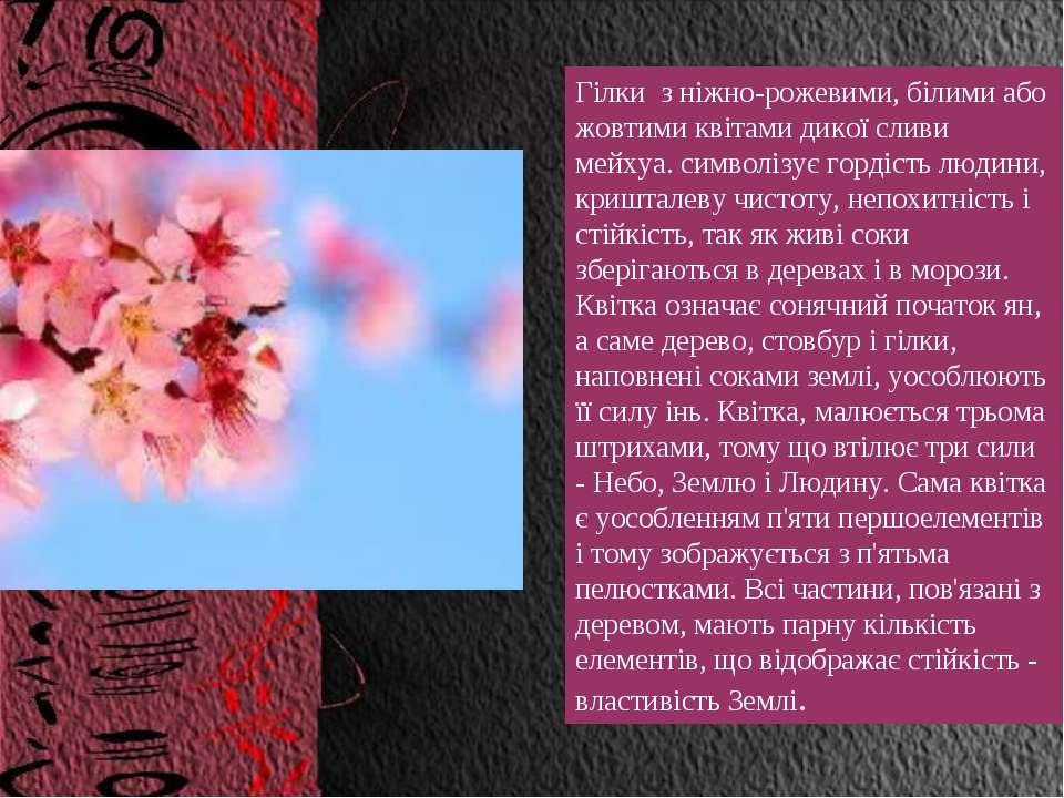 Гілки з ніжно-рожевими, білими або жовтими квітами дикої сливи мейхуа. символ...