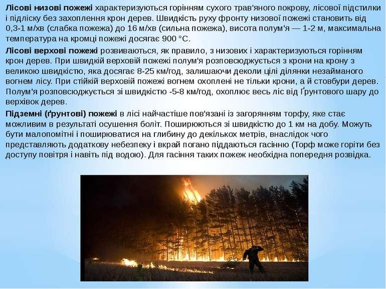 Лісові низові пожежі характеризуються горінням сухого трав'яного покрову, ліс...