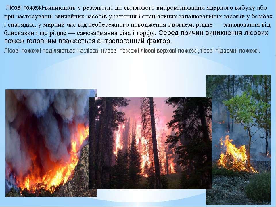 Лісові пожежі-виникають у результаті дії світлового випромінювання ядерного в...