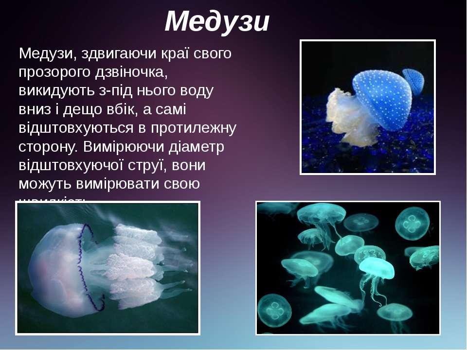 Медузи Медузи, здвигаючи краї свого прозорого дзвіночка, викидують з-під ньог...