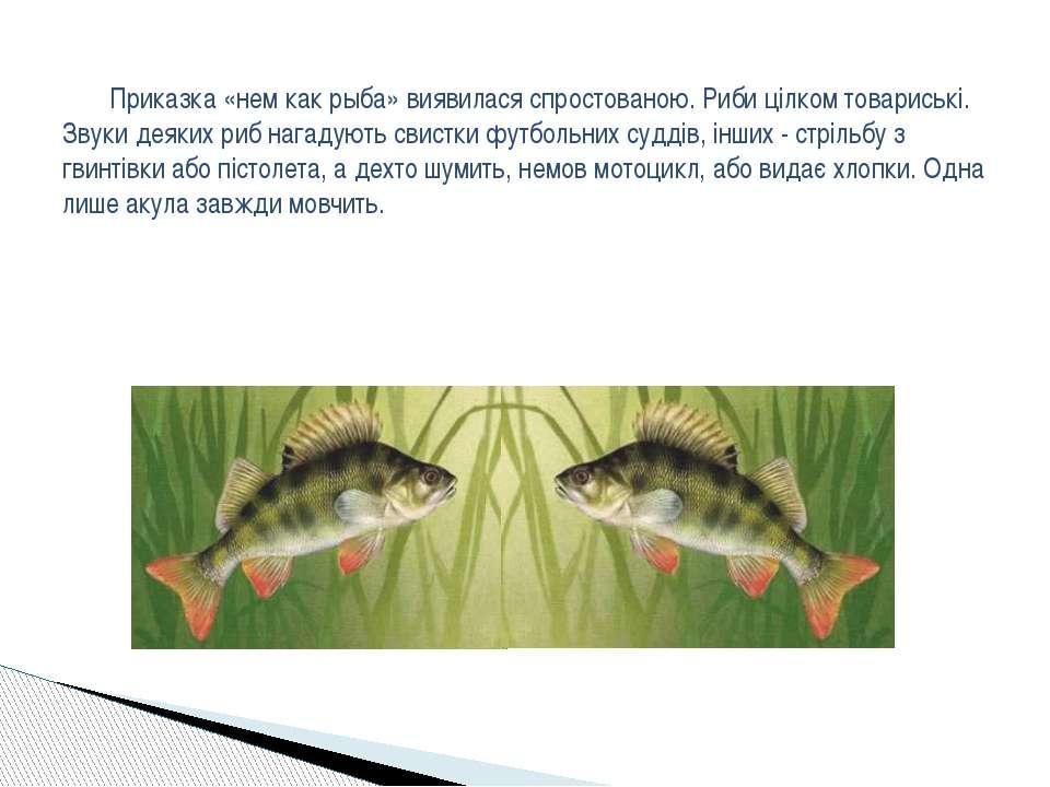 Приказка «нем как рыба» виявилася спростованою. Риби цілком товариські. Звуки...