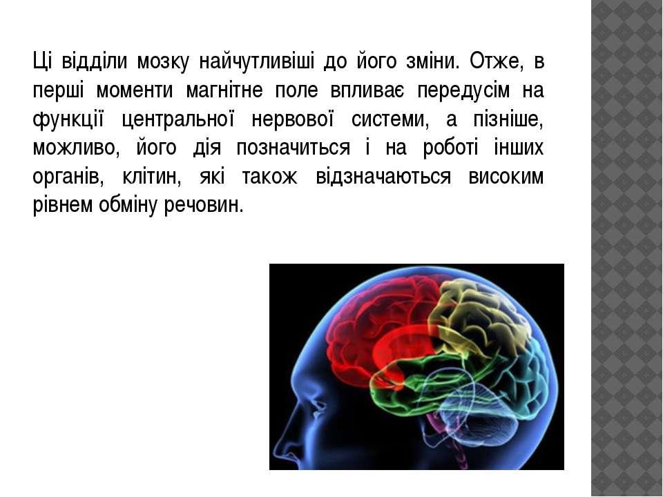 Ці відділи мозку найчутливіші до його зміни. Отже, в перші моменти магнітне п...